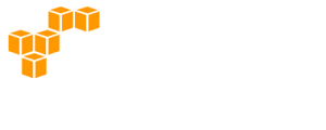 Logo, AWS Partner Network, Consulting Partner