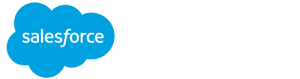 Logo, Salesforce Silver Consulting Partner