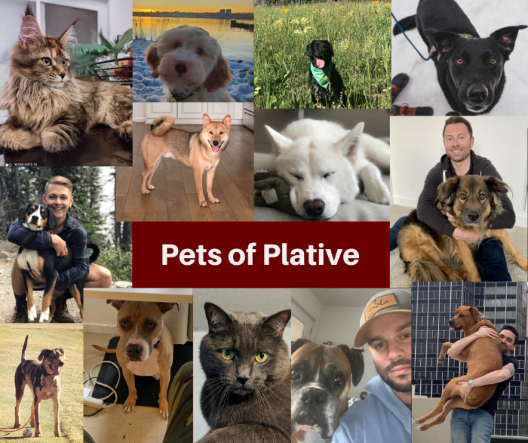Celebrating National Pet Day: Pets of Plative
